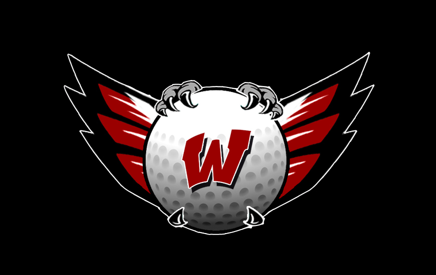 Image result for lakota west golf ball